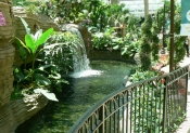 gaylord-palms-may-17-2006-020