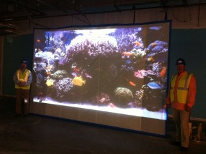 Bottled Ocean's Baron Kozy and Greg Lund unveil life-size projection of 1,500-gallon tank