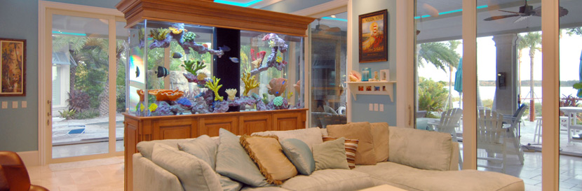 custom aquarium builder orlando