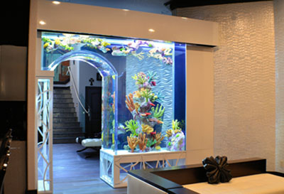 custom aquariums orlando